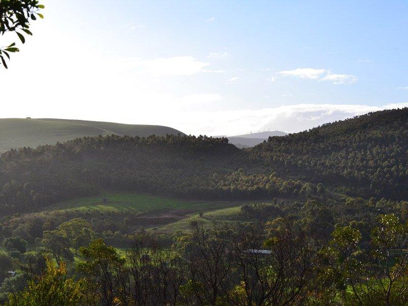 Pentland Hills 1